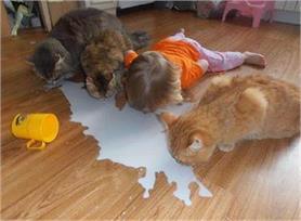 बच्चों की ऊट-पटांग हरकतें हंसा-हंसा कर करेगी लोट-पोट!! (PIX)