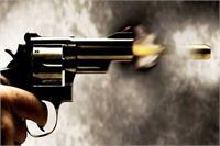मेरठ के हस्थिनापुर में डाक्टर की गोली मारकर हत्या ,नौकर घायल