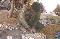 इस गांव में खुलेआम तैयार की जा रही है बारूद की फसल