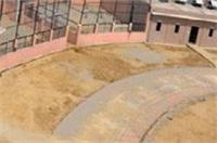 CM अखिलेश के ड्रीम प्रोजेक्ट इटावा में शेरनी ने तोड़ा दम, मचा हड़कम्प