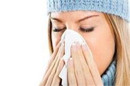 डाइट में शामिल करें ये चीजें, एलर्जी से रहेंगे दूर!