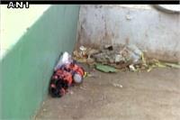 इलाहाबाद: रेलवे स्टेशन पर मिला संदिग्ध टाइम बम, मौके पर पहुंचा बम निरोधक दस्ता