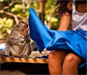 funny pics: इंसान अौर जानवरों की एेसी हरकतें, जो करेंगी अाप को हंसने पर मजबूर