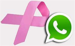 अब व्हॉट्सएप्प के जरिए जानें किडनी से जुड़ी बीमारियों के बारे में
