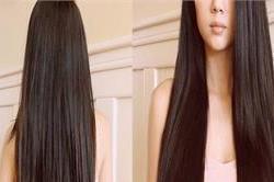 बालों में लगाएं अदरक और जैतून का तेल, तेजी से बढ़ेगी Growth