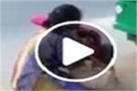 बीच सड़क 2 लड़कियों में जमकर चले लात-घूसे, वीडियो वायरल