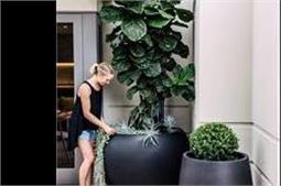 घर में लगाएं ये पौधे, बीमारियों से रहेंगे हमेशा बचें!