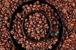 भारत में कॉफी उत्पादन रिकॉर्ड 3.5 लाख टन रहने का अनुमान