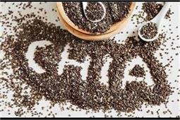 स्वास्थ्य गुणों से भरपूर हैं चिया के बीज