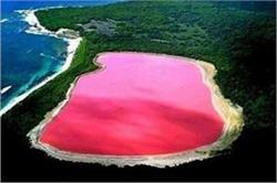 ये है दुनिया की सबसे अजीब-गरीब 'गुलाबी झील', देखकर हो जाएंगे हैरान