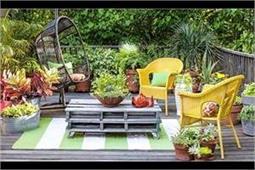 शुद्ध हवा चाहते हैं तो घर के बाहर लगाएं ये Plants