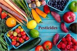 10 एेसे उपाय, जाे मिनटों में दूर करें सब्जियों पर लगे बैक्टीरिया