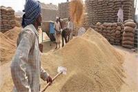 अमेठी में धान क्रय केंद्र खुलने के बाद किसानों की मुश्किलें हुई कम