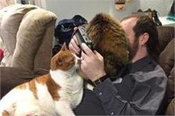 बिल्लियों के साथ लोगों की मस्ती देखकर नहीं रोक पाएंगे अपनी हंसी