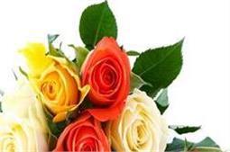 चेहरे की सुदंरता को भी बढ़ाता है गुलाब का फूल