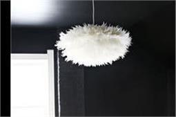 लिविंग हो या डाइनिंग रूम, White Feather Pendant से करें डैकोरेशन