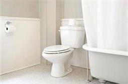 टॉयलेट सीट को ऐसे रखें Germ Free