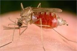 अब आसानी से हो सकेगी मलेरिया की रोकथाम
