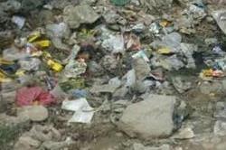 पूर्व विधायक के मोहल्ले में दम तोड़ गई स्वच्छ भारत मुहिम