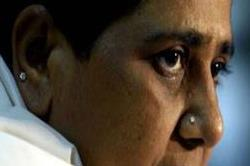 निकाय चुनाव में ब्राह्मण चेहरे पर दाव लगाएगी BSP