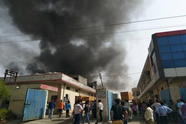 बहादुरगढ़ में जूता फैक्ट्री में भीषण आग, धुएं के गुबार से भरा आसमान