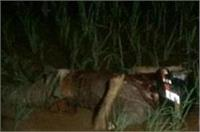 बिजनौर में सब इंस्पेक्टर की गला रेत कर हत्या, पिस्टल लेकर बदमाश फरार