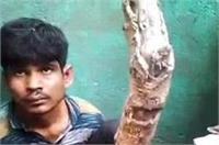 आइसक्रीम व्यापारी के घर युवकों को चोरी करना पड़ा भारी, जनता ने की जमकर पिटाई