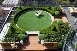 आंगन के साथ छत पर भी सजाएं खूबसूरत Garden