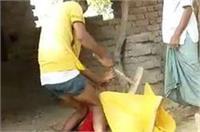 यूपी में बेखौफ दबंग, महिला और बेटे को सरेआम जमकर पीटा