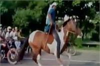 नोएडा एक्सप्रेस वे पर घुड़सवारों की बाइकर्स के साथ लगी रेस, वीडियो वायरल