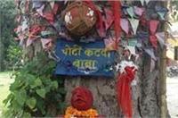 ऐसा देश है मेरा: चोटीकटवा बाबा की मूर्ति स्थापित कर धूमधाम से हो रही पूजा-पाठ