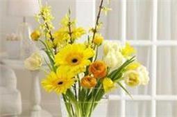 इस फूड से फूल बनें रहेंगे Fresh