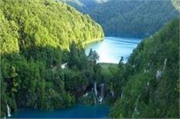 प्रकृति का नजारा लेने के लिए करें दुनिया के इन खूबसूरत जंगलों की सैर