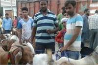 बकरीद पर प्रशासन की अपीलः खुले में ना दें कुर्बानी, ऊंट घुमाने पर भी लगी पाबंदी