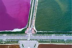 दुनिया की सबसे अनोखी झील, दो रंगों में बंट जाता है इसका पानी