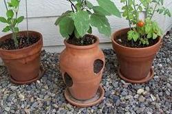 मिट्टी से बनी इन चीजों को घर में रखने से दूर होगे कई वास्तु दोष
