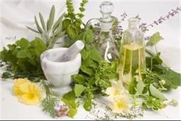इन आयुर्वेदिक औषधियों का इस्तेमाल दूर करेगा कई बीमारियां