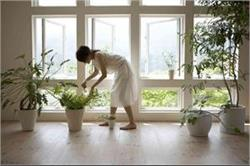 2018 में लगाएं ये पौधे, घर में कभी नहीं होगी धन की कमी!