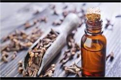 आयुर्वेदिक के गुणों से भरपूर है लौंग का तेल, जानिए इसके फायदे