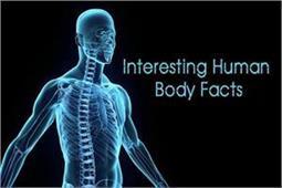 Interesting Facts: जानिए मानव शरीर से जुड़ी 10 दिलचस्प बातें