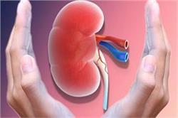 World Kidney Day: किडनी रोग के लक्षणों को पहचान कर एेसे करें घरेलू उपचार