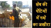 डेढ़ क्विंटल चूरापोस्त की Punjab में सप्लाई का भंडाफोड़, एक तस्कर गिरफ्तार