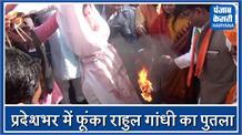 बीजेपी ने कांग्रेस के खिलाफ खोला मोर्चा, प्रदेशभर में राहुल गांधी का फूंका पुतला
