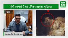 शिकार के लिए घात लगाए बैठा था तेंदुआ, शख्स ने कैमरे में कर लिया कैद