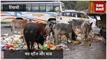 रियासी में महज फोटो सेशन बनकर रह गया स्वच्छता अभियान