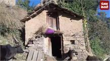 Himachal: गाय को 'राष्ट्रमाता' का दर्जा देने का प्रस्ताव सदन में मंजूर