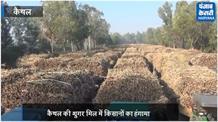 शुगर मिल में किसानों का हंगामा, गन्ना तुलवाई में पाई गई गड़बड़ी