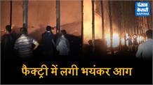 प्लाईवुड की फैक्ट्री में भीषण आग, लाखों रुपये की कच्ची व तैयार प्लाई जलकर राख
