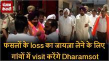 फसलों के loss का जायज़ा लेने के लिए गांवों में visit करेंगे dharamsot
