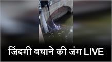 डूबती छात्रा को बचाने रानी तालाब में कूदा युवक, देखिए LIVE रेस्क्यू